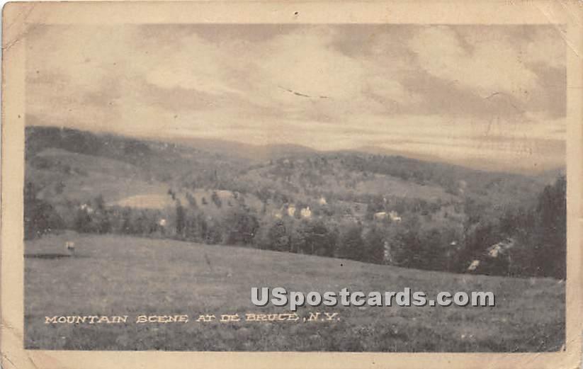 Mountain Scene - De Bruce, New York NY Postcard