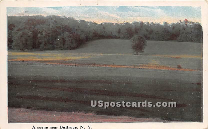 Grass View - De Bruce, New York NY Postcard