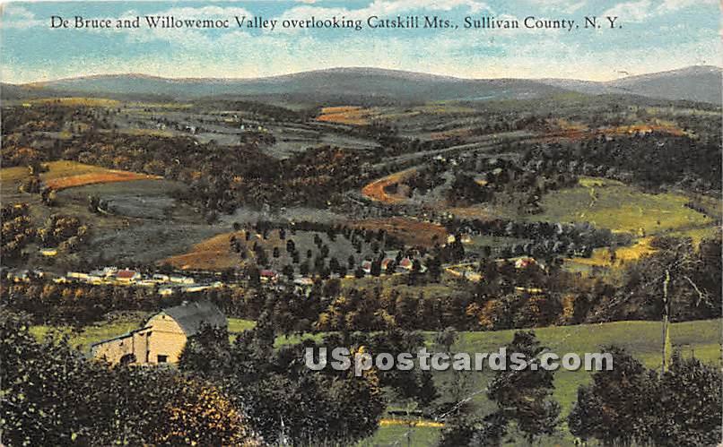 DeBruce and Willowemoc Valley - De Bruce, New York NY Postcard