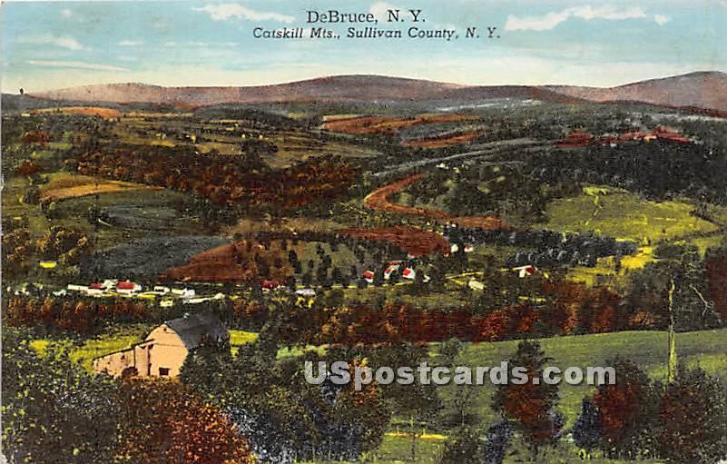 Catskill Mountains - De Bruce, New York NY Postcard