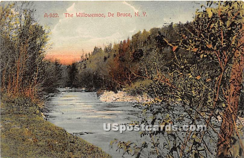 The WIllowemoc - De Bruce, New York NY Postcard