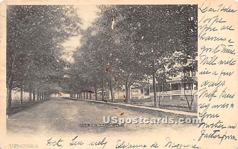 Street Scene - De Bruce, New York NY Postcard