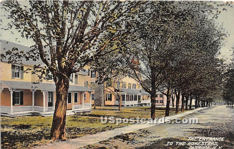 The Entrance to the Homestead - De Bruce, New York NY Postcard