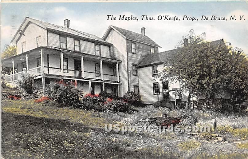 The Maples - De Bruce, New York NY Postcard