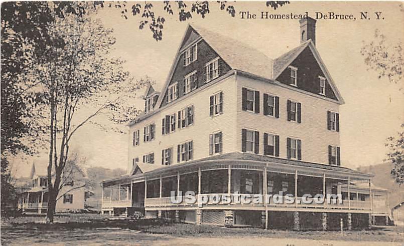 The Homestead - De Bruce, New York NY Postcard