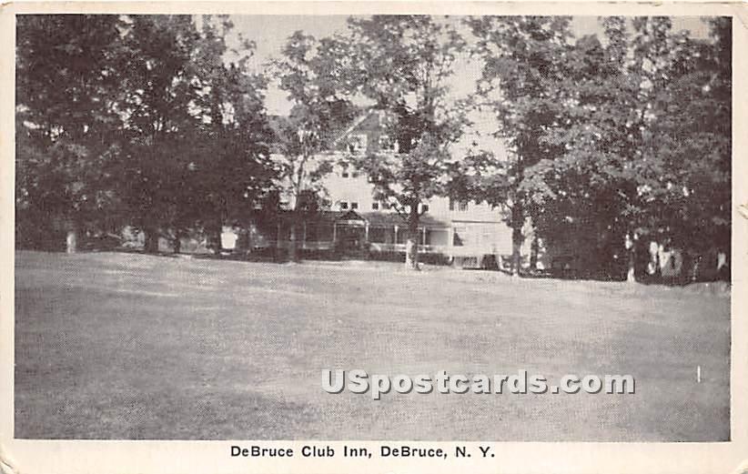 DeBruce Club Inn - De Bruce, New York NY Postcard