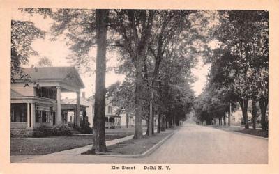 Elm Street Delhi, New York Postcard