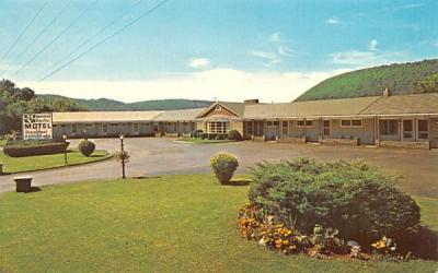 Buena Vista Motel Delhi, New York Postcard