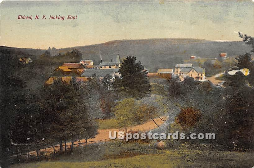 Looking East - Eldred, New York NY Postcard