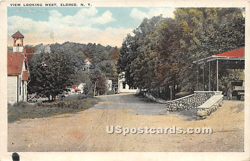 View Looking West - Eldred, New York NY Postcard