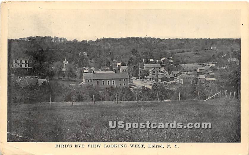 Birds Eye View - Eldred, New York NY Postcard
