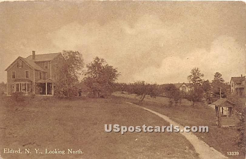 Looking North - Eldred, New York NY Postcard