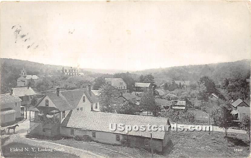 Looking South - Eldred, New York NY Postcard