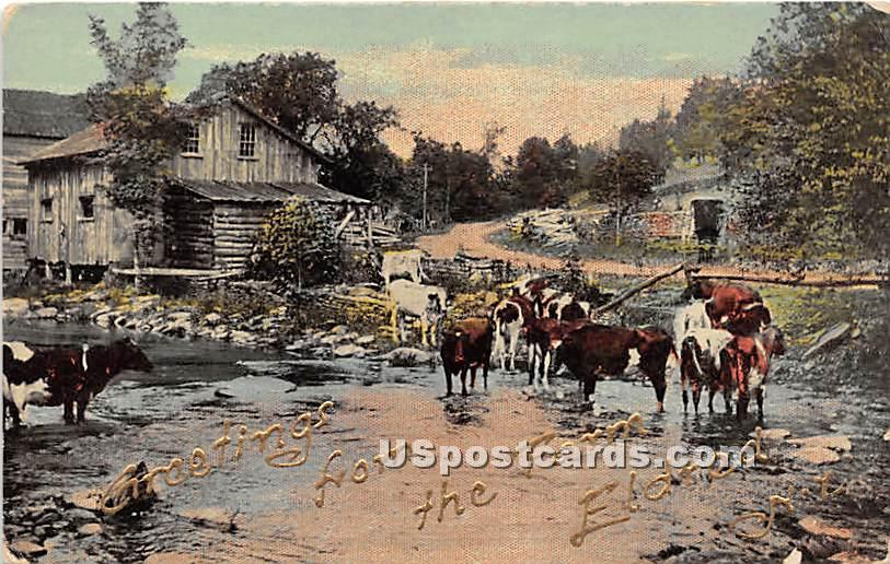 Greetings from - Eldred, New York NY Postcard