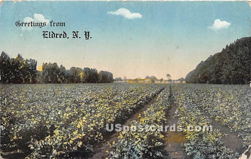 Crop View - Eldred, New York NY Postcard