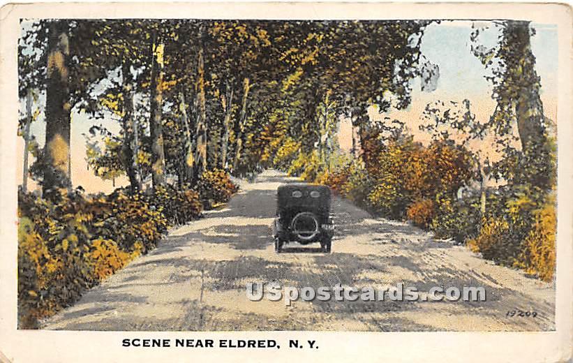 Road Scene - Eldred, New York NY Postcard