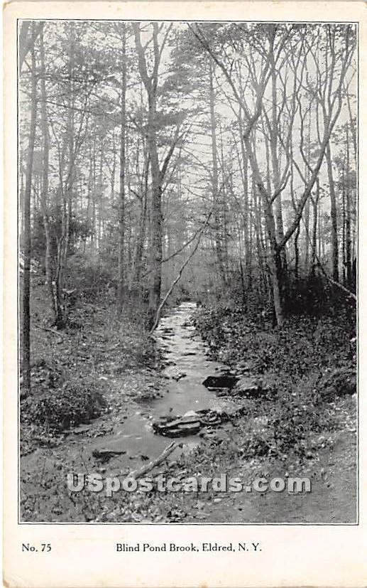 Bling Pond Brook - Eldred, New York NY Postcard