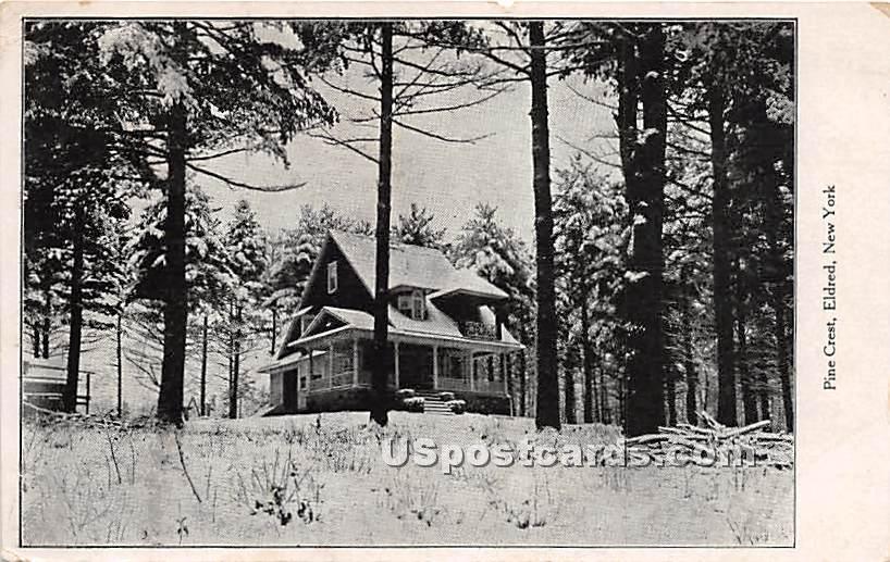 Pine Crest - Eldred, New York NY Postcard