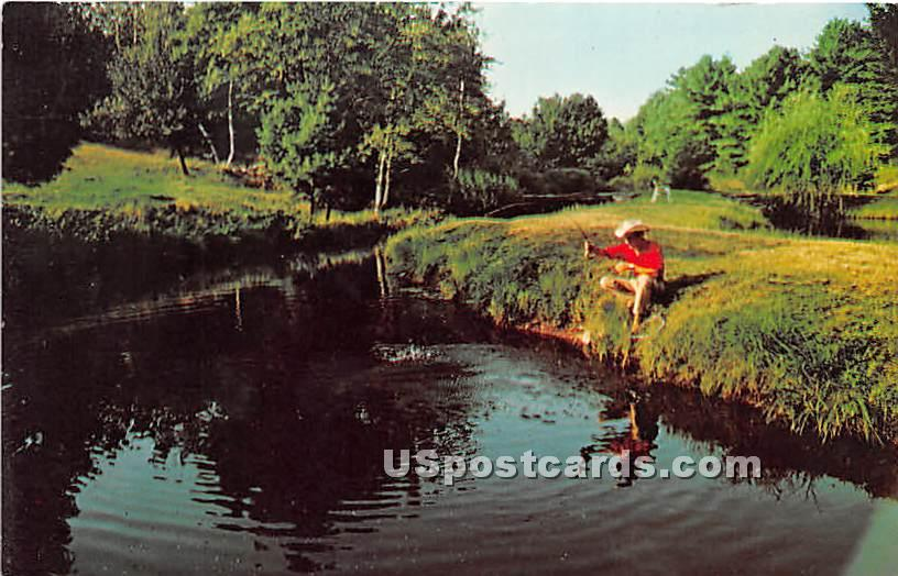 Aeirondack Fisheries Inc - Eldred, New York NY Postcard
