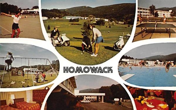 Homowack Ellenville, New York Postcard