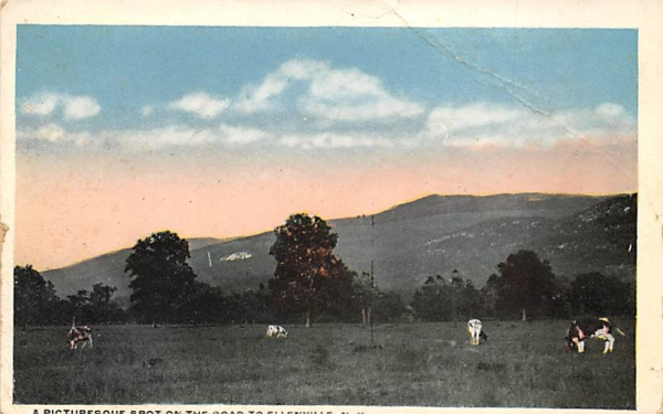 Road to Ellenville New York Postcard