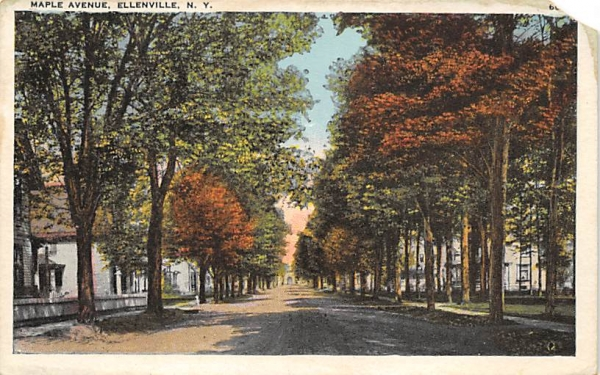 Maple Aveenue Ellenville, New York Postcard
