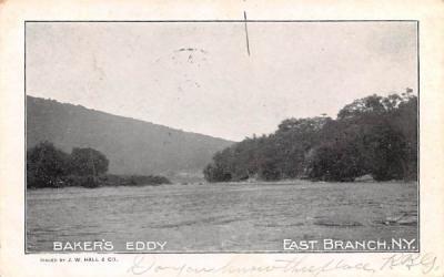 Baker's Eddy East Branch, New York Postcard