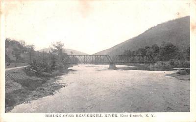 Bridge over Beaverkill River East Branch, New York Postcard