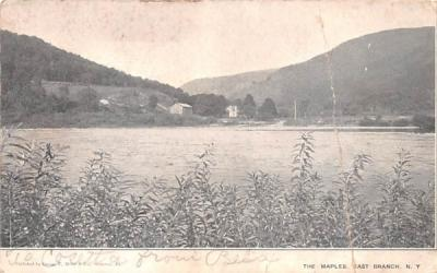 The Maples East Branch, New York Postcard