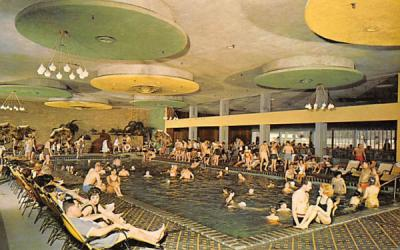 The Nevele Pool Ellenville, New York Postcard