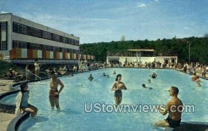 Schenk's Hotel - South Fallsburg, New York NY Postcard