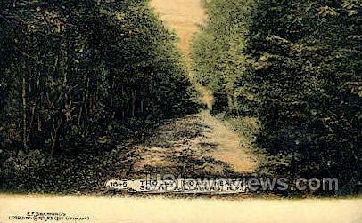 Trolly Road - South Fallsburg, New York NY Postcard
