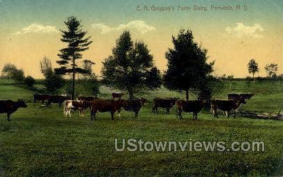 Farm Dairy - Ferndale, New York NY Postcard