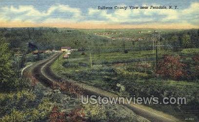 Sullivan Co - Ferndale, New York NY Postcard