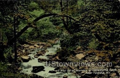Cayadutta Park - Fonda, New York NY Postcard