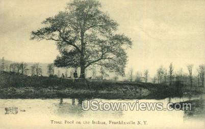 Ischua - Franklinville, New York NY Postcard