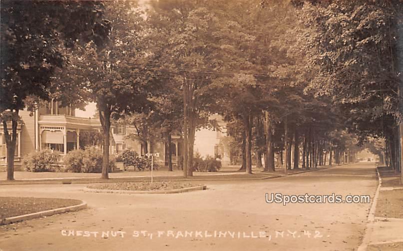 Chestnut Street - Franklinville, New York NY Postcard