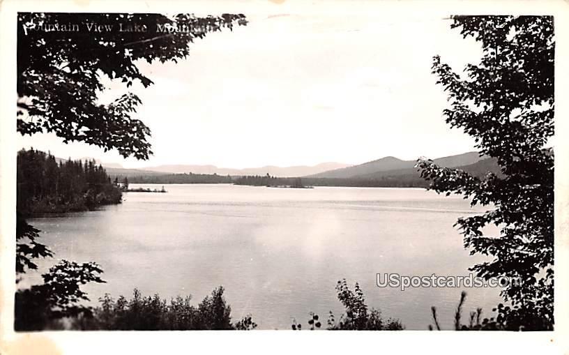 Lake View - Franklin, New York NY Postcard
