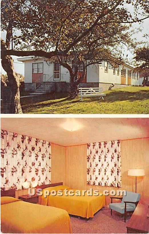 Stier's Hotel - Ferndale, New York NY Postcard