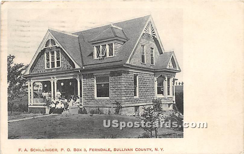 F A Schillinger - Ferndale, New York NY Postcard