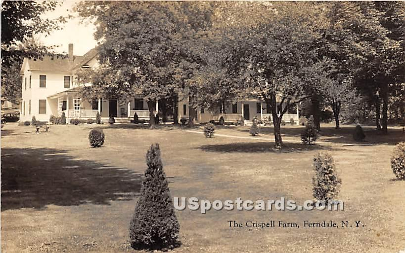 The Crispell Farm - Ferndale, New York NY Postcard