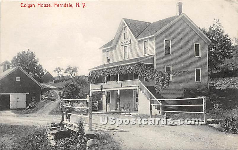 Colgan House - Ferndale, New York NY Postcard