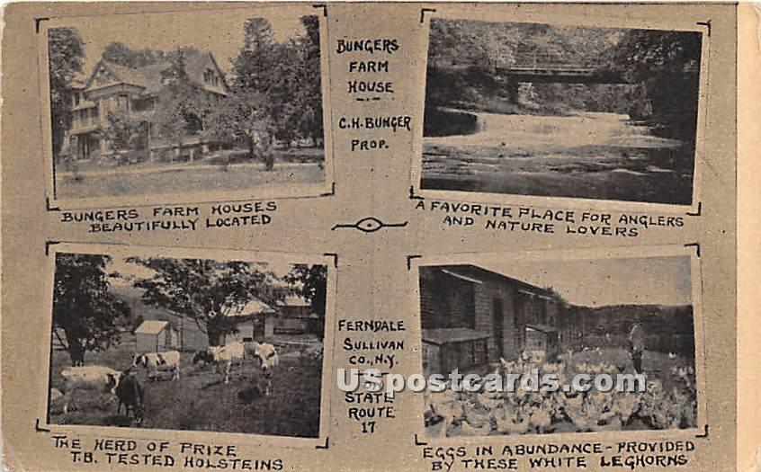 Bunger's Farm House - Ferndale, New York NY Postcard