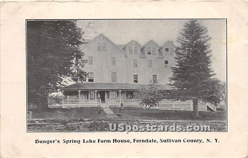 Bunger's Spring Lake Farm House - Ferndale, New York NY Postcard