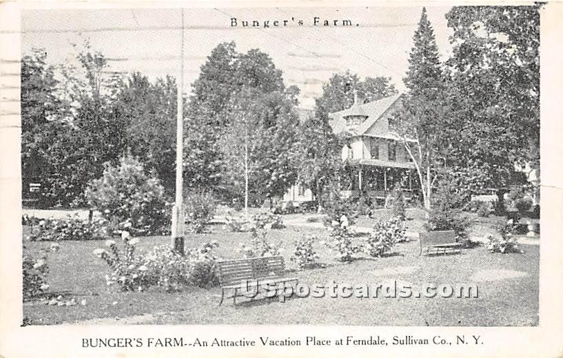 Bunger's Farm - Ferndale, New York NY Postcard