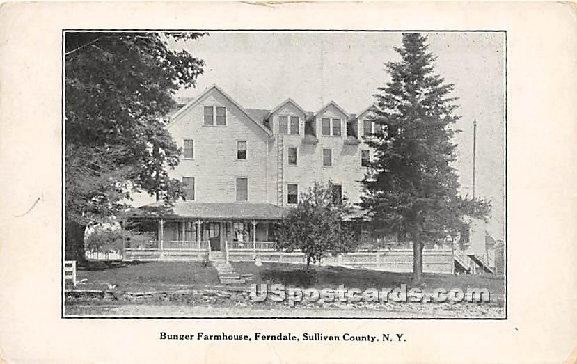 Bunger Farm House - Ferndale, New York NY Postcard