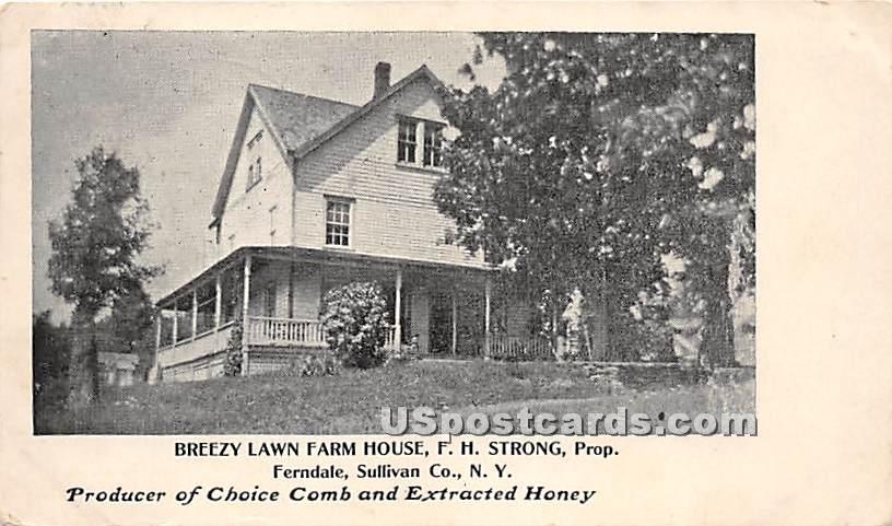 Breezy Lawn Farm House - Ferndale, New York NY Postcard