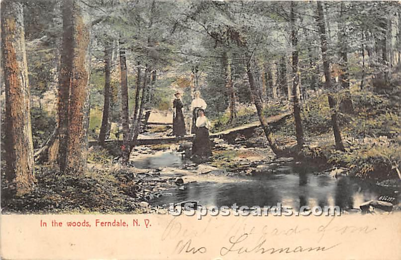 In The Woods - Ferndale, New York NY Postcard