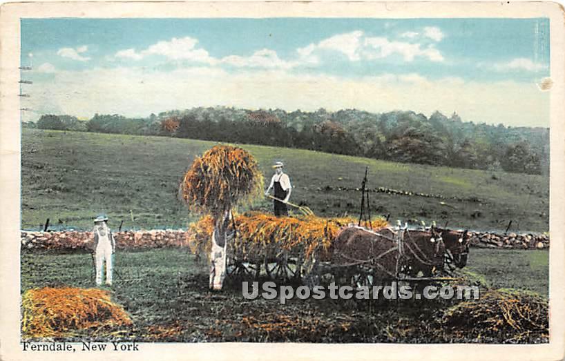 Hay Scene - Ferndale, New York NY Postcard