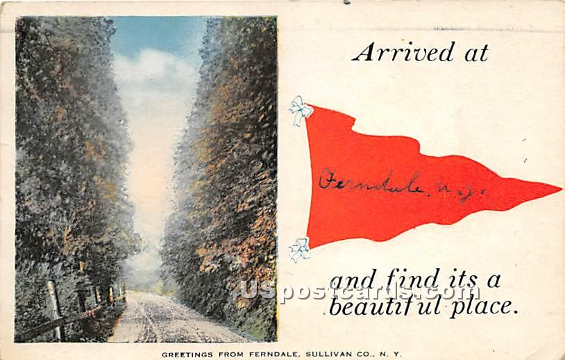 Arrived at - Ferndale, New York NY Postcard